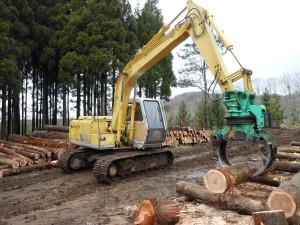 伐採される町有林材
